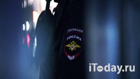 Полиция в Сочи проверит информацию о мужчине, который избил собаку битой - 21.08.2021