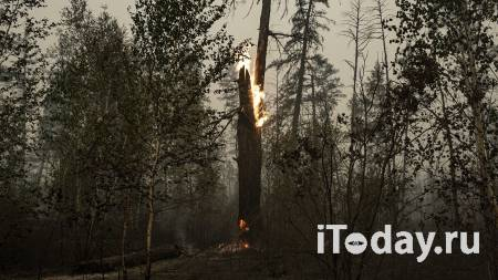 Глава Якутии рассказал о ситуации с лесными пожарами - 31.08.2021